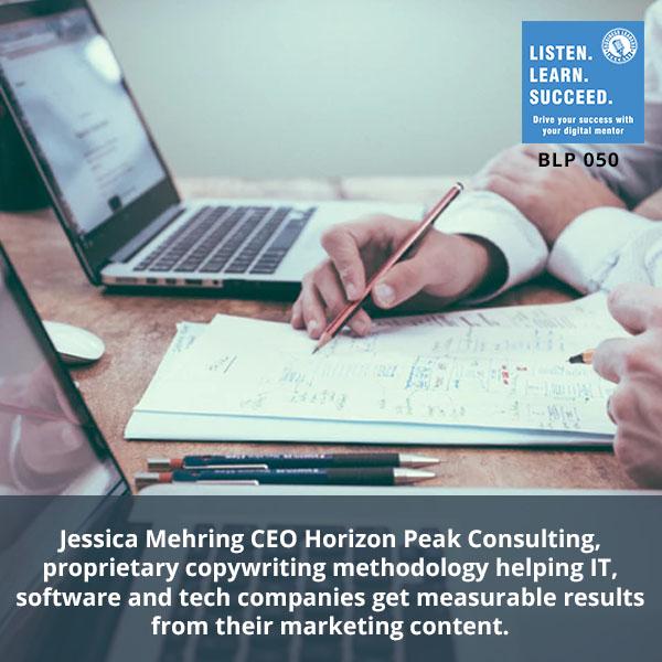BLP Mehring | Horizon Peak Consulting